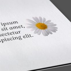 grammatura della carta